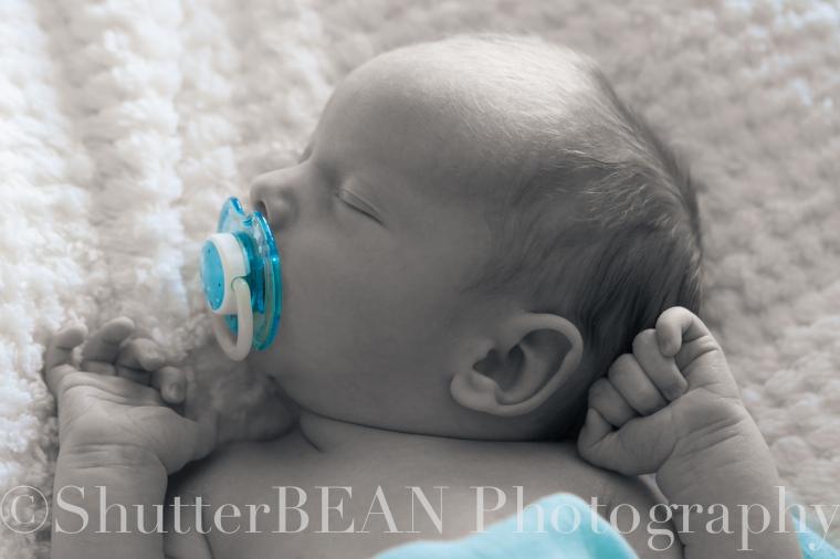 William Batchelor Newborn Nov 2012-46