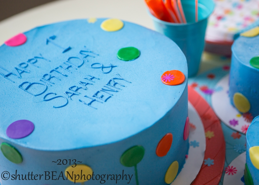 BirthdayCelebrationForBlog-5
