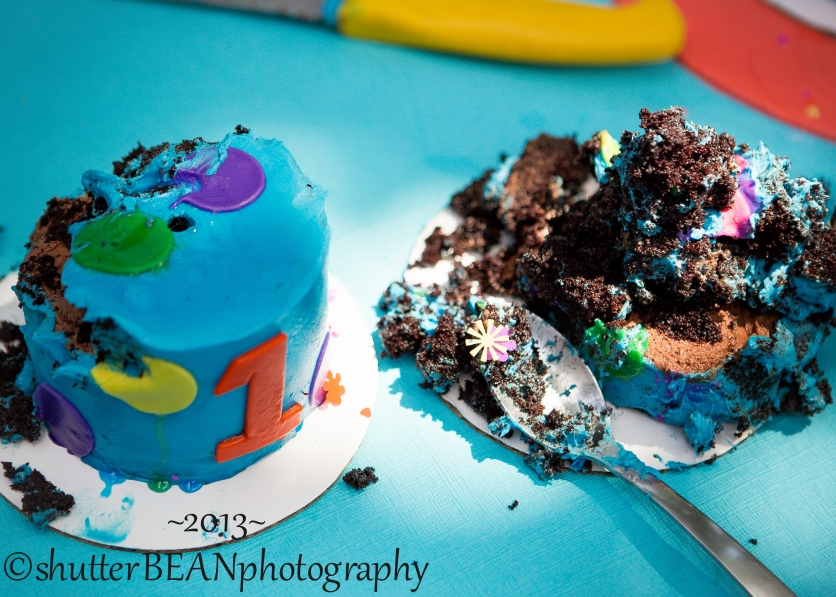 BirthdayCelebrationForBlog-87