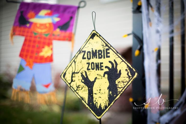 ZombieZone2015